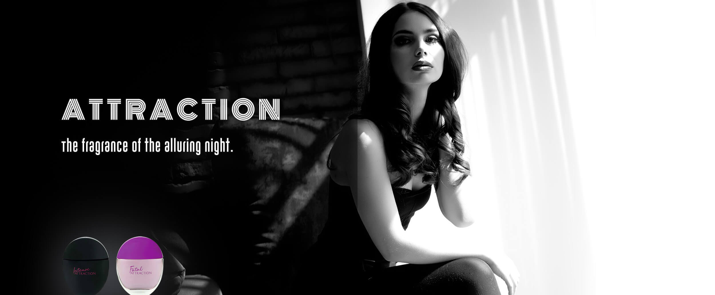 Attraction-Category-Banner-2